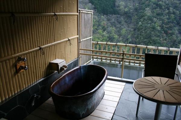 祖谷温泉 ホテル祖谷温泉