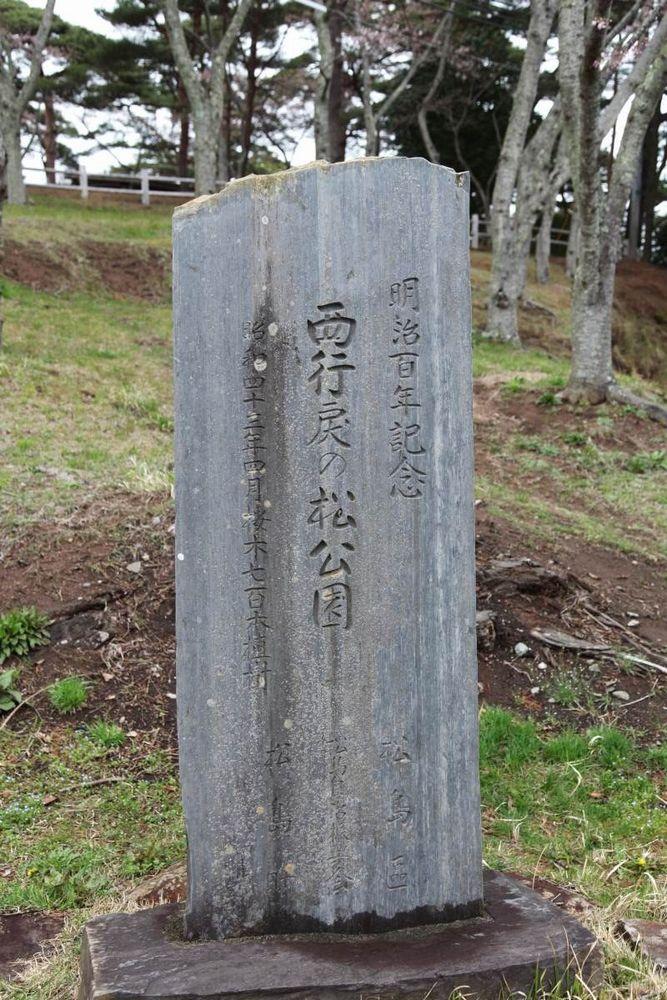 春の松島の絶景ポイント 西行戻しの松公園【宮城県の観光地】の写真